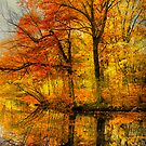 Fall colors of New England by LudaNayvelt