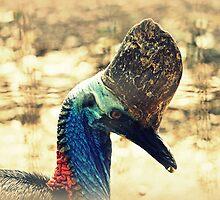 Southern Cassowary Bird by Evita