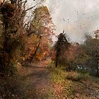 Autumn Path by John Rivera