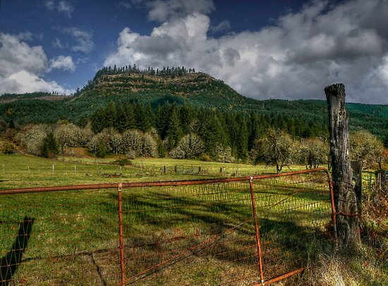 Don't Fence Me In by Charles & Patricia   Harkins ~ Picture Oregon