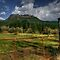 Don&#x27;t Fence Me In by Charles &amp; Patricia   Harkins ~ Picture Oregon