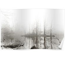 Just this morning at the pond Poster