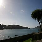 View across Salcombe estuary, Devon, UK by silverportpics