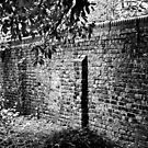 A Wall Along a Path in Southwark by A.David Holloway