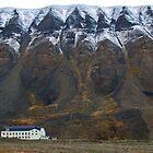 Huset i Longyearbyen by Algot Kristoffer Peterson