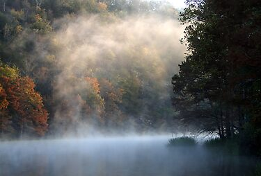 Rising Mist by Carolyn  Fletcher