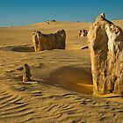 Pinnacles Two by fotoWerner