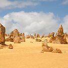 The Pinnacles at Nambung National Park Western Australia by Leonie Mac Lean