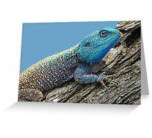 Tree Agama Greeting Card