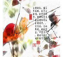 New Beginning  Photographic Print
