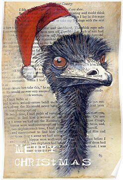 Emu Christmas Card by Michele Meister