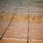 Beach Moorings by Sally Werner