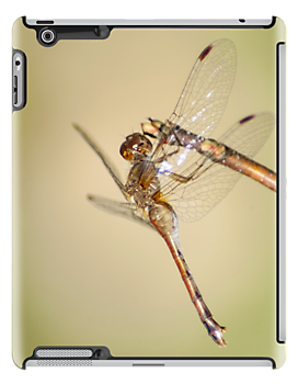 Dragonfly iPad by KBritt