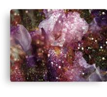 Abstract Iris. Canvas Print