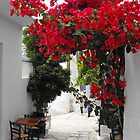 Greek Island street and flowers 1 by SlavicaB
