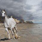 Running free (the unicorn) by EJLazenbyArt
