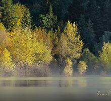 AUTUNNO Alba sul lago - AUTUMN Lake dawn 9681 by Enrico Pelos
