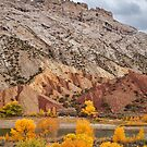 Split Mountain Color by Kim Barton