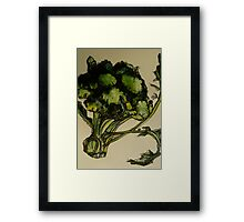 Broccoli. Pen and wash on Arches paper. Elizabeth Moore Golding Ⓒ2012 Framed Print