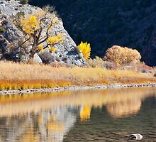 Autumn at the Cove 2 by Kim Barton