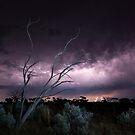 Armageddon - Great Victoria Desert, WA by Liam Byrne