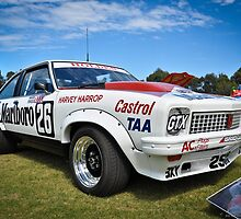All Torana by Clintpix