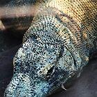 Komodo Dragon. by Emily-RoseIrene