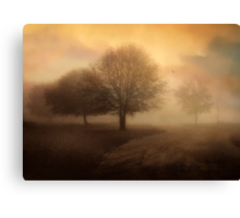 Undiscovered Canvas Print