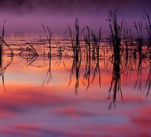 Sunrise Reflection by April Koehler