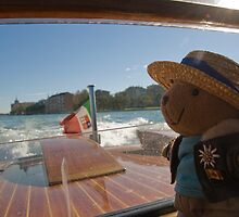 Pilot bear goes to Venice. by sandyprints