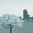 Louisville Ice  by LizzieMorrison