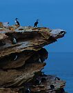 Cormorant rocks at Warnambool by Yukondick