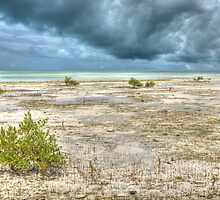 Storm over St Andrews Beach at Yamacraw in Nassau, The Bahamas by 242Digital