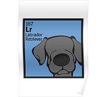 Lab (Black) - The Dog Table Poster