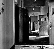 Doors Of Reception by Paul Lubaczewski