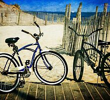 Two Bicycles  by Debra Fedchin