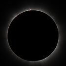Eclipse - Cairns 2012, Prominences by Wayne England