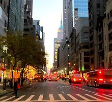5th Avenue, New York City  by Alberto  DeJesus