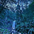 Hopetoun Falls at Night by pablosvista2