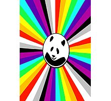 rainbow panda Photographic Print