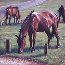 three new forest horses on grass by martyee