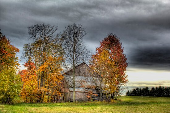 Rural Ohio in Autumn by carlosramos