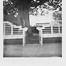 Boston Park Bench by BingBangVision