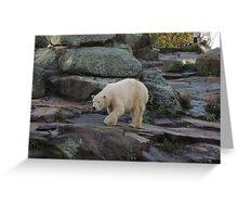 Big Bear Paws Greeting Card