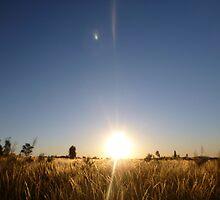 Breaking Dawn by GorgeousPics