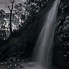 Second Falls, Waterfall Gully in Moonlight by pablosvista2