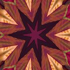 Inner Star IPad by Deborah  Benoit