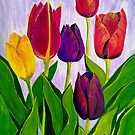 Tulip colours by Ciska
