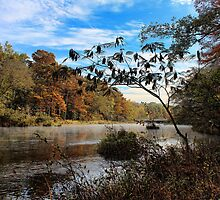 Fall At Beavers Bend 2012 by Carolyn  Fletcher