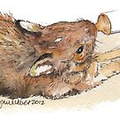 Nursing Cottontail Rabbit by Lynn Oliver